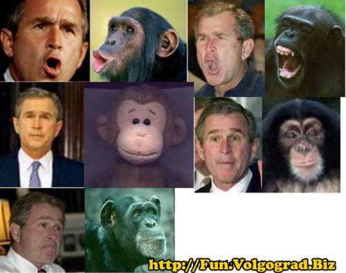 http://www.prikol.biz/images_large/politic/politik_0162.jpg