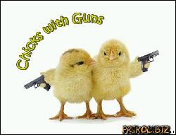 Chicks with Guns (596x453, 35 kБ...)